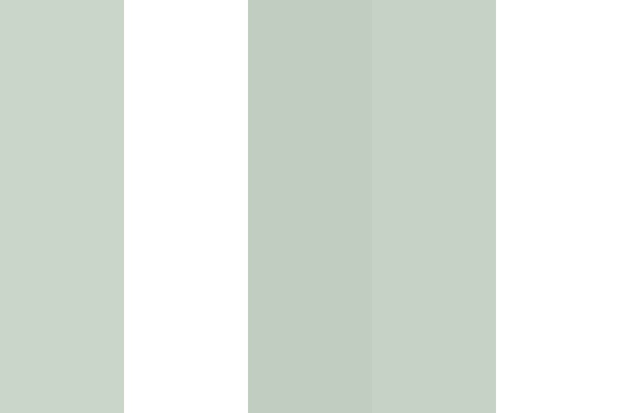 Light Green And Coral Palette Color Palette