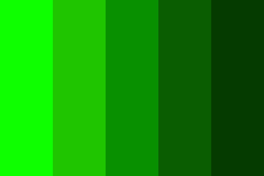 Light Green To Dark Green Color Palette