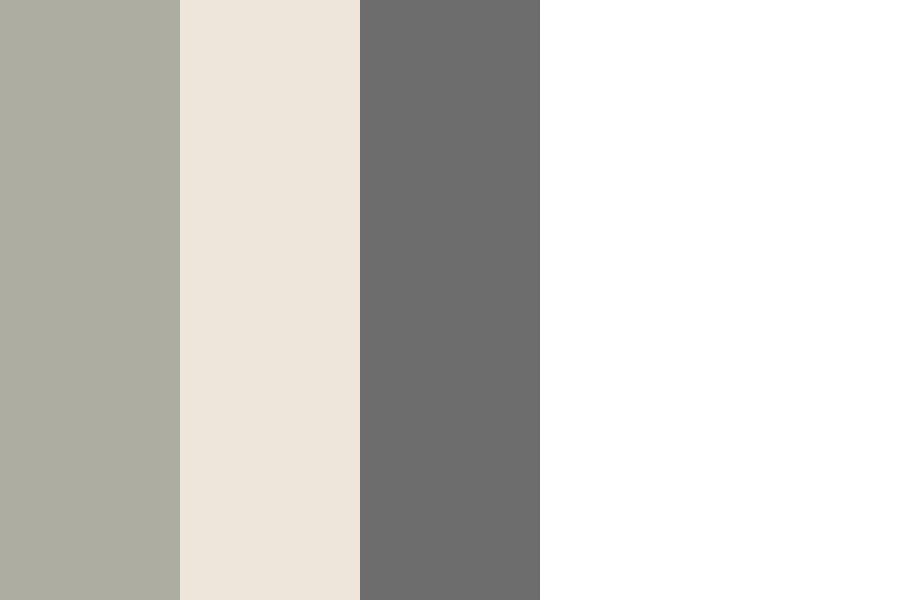 Manor House Gray   Blackened   Down Pipe Color Palette