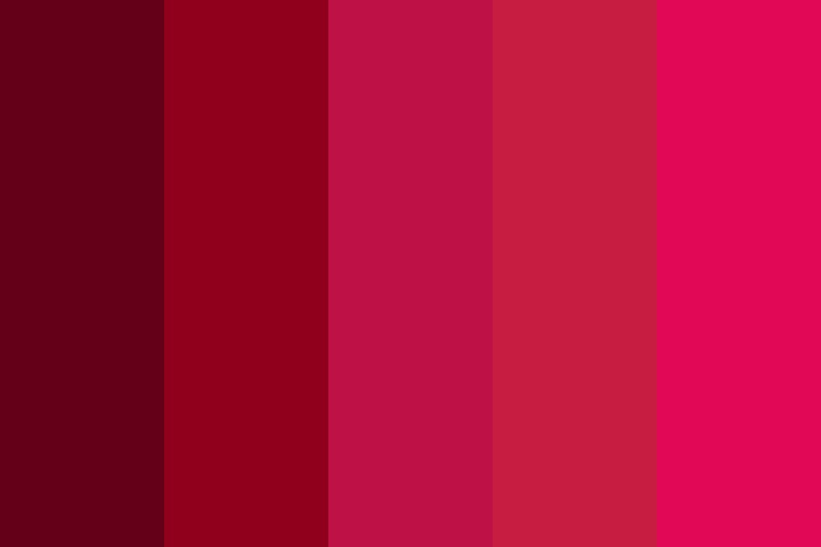 Maroon And Stuff Color Palette