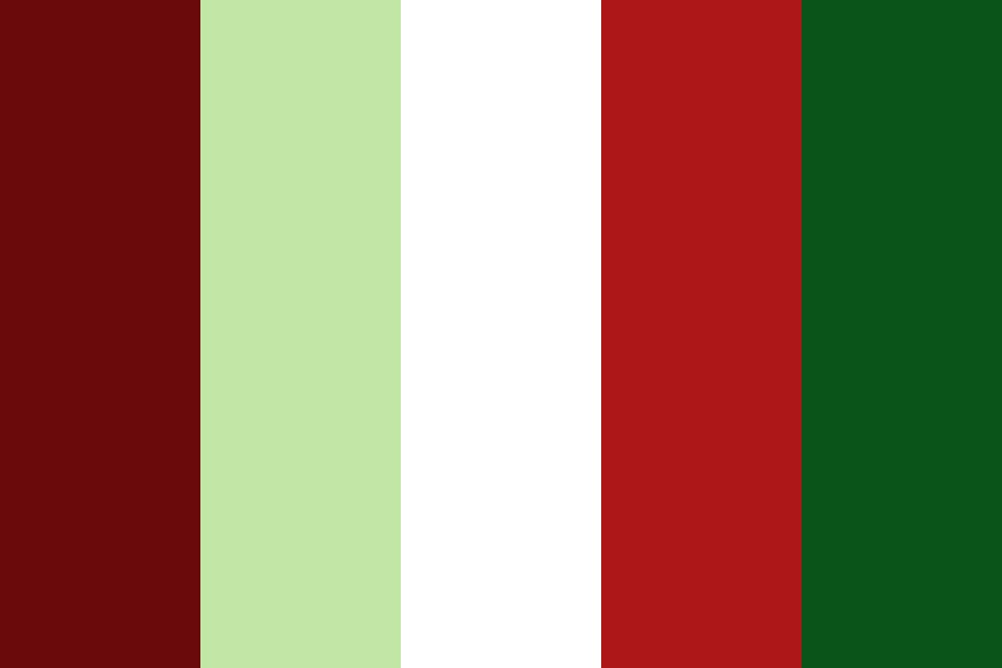 Merry Christmas From Santa Color Palette
