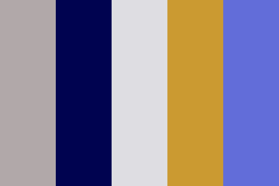 Midnight Flight Color Palette