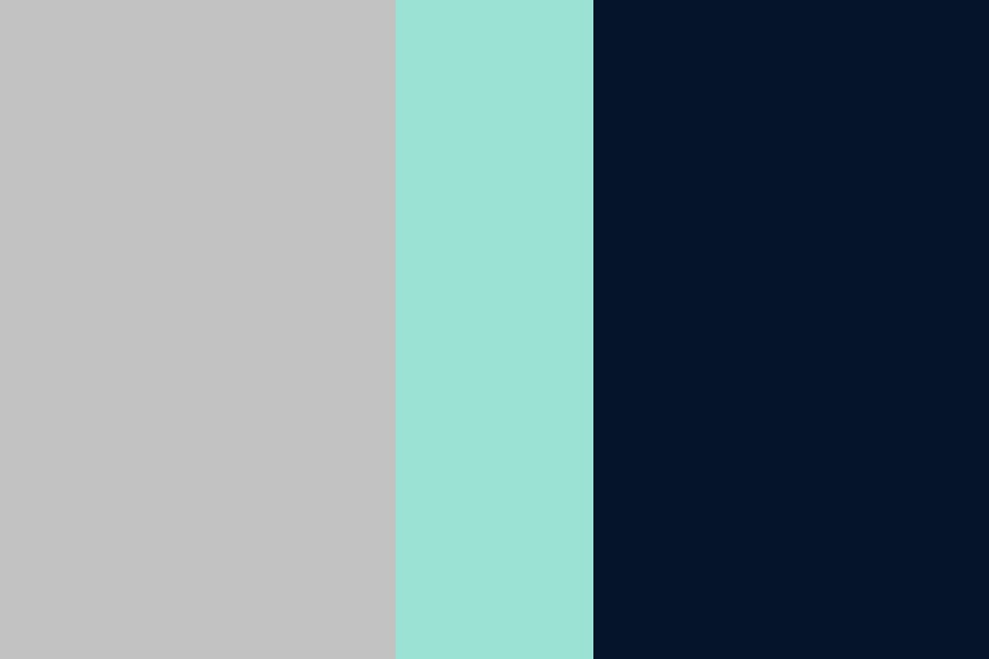 Mint Navy And Grey Color Palette