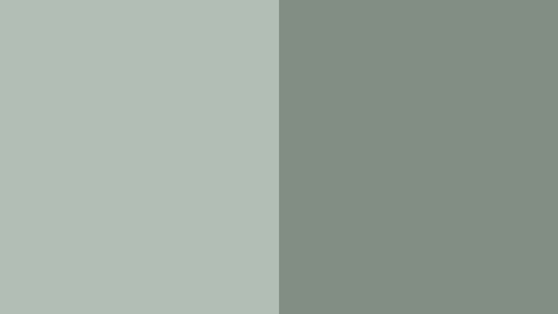Moonwalk Grey Color Palette