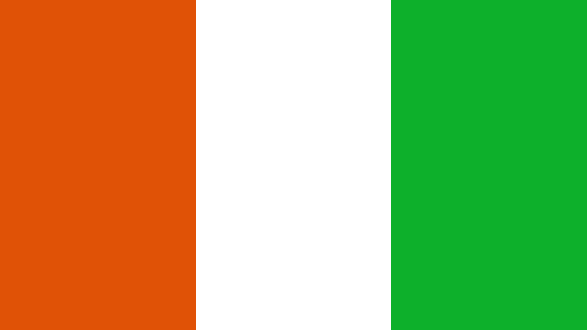 Niger Flag Color Palette