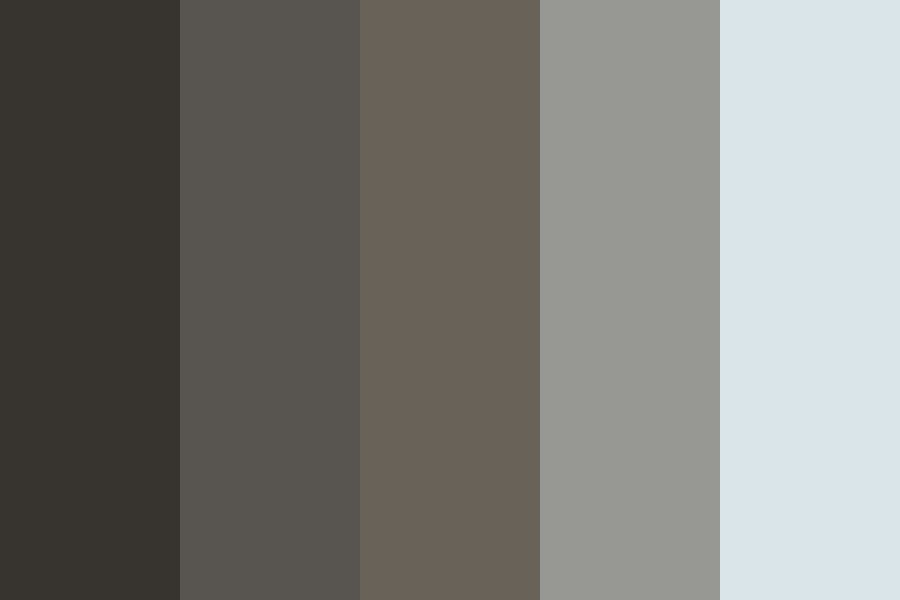 Ocean And Birds Color Palette