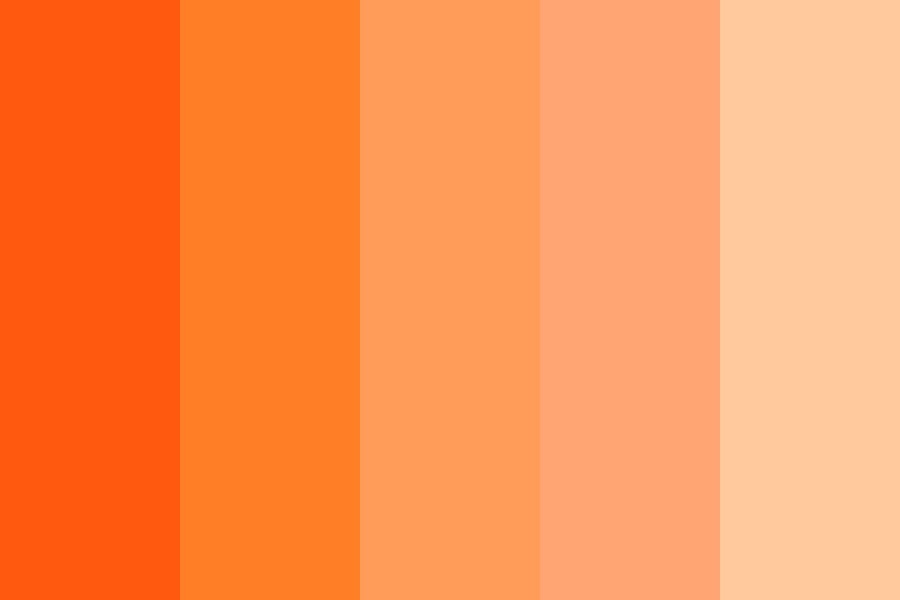 Orange Creamsicle Color Palette