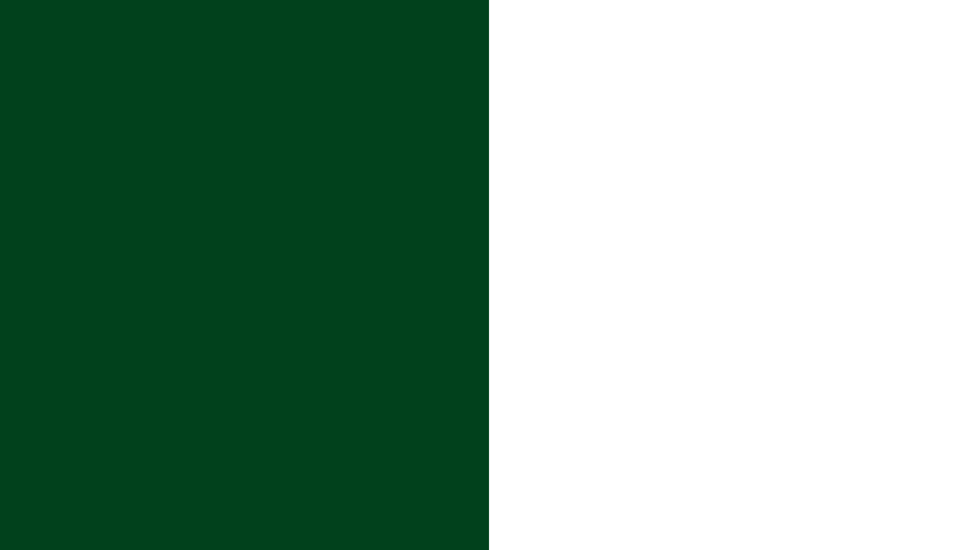 Pakistan Flag Color Palette