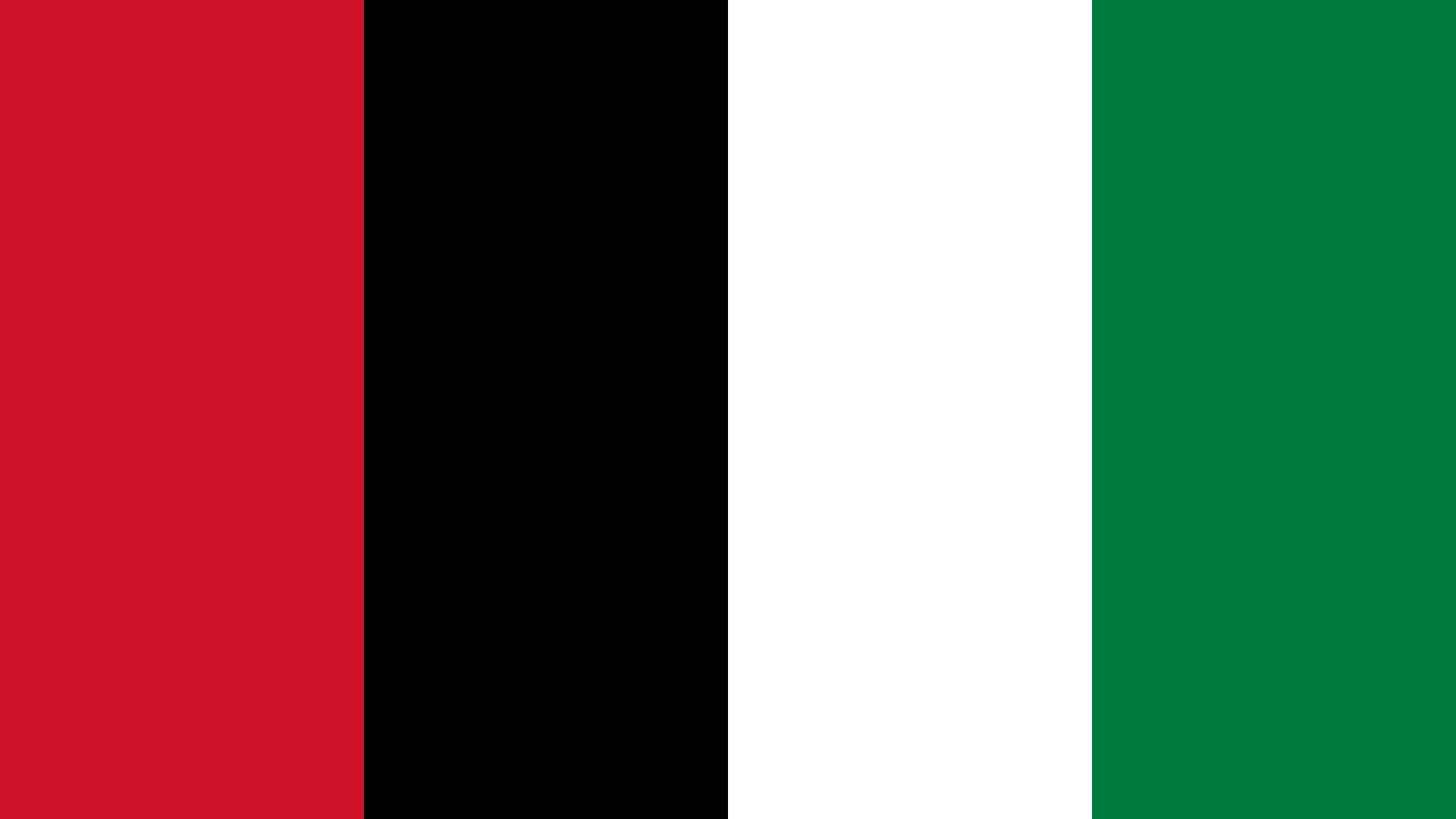 Palestine Flag Color Palette