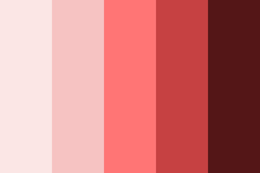 Pink Theme Color Palette