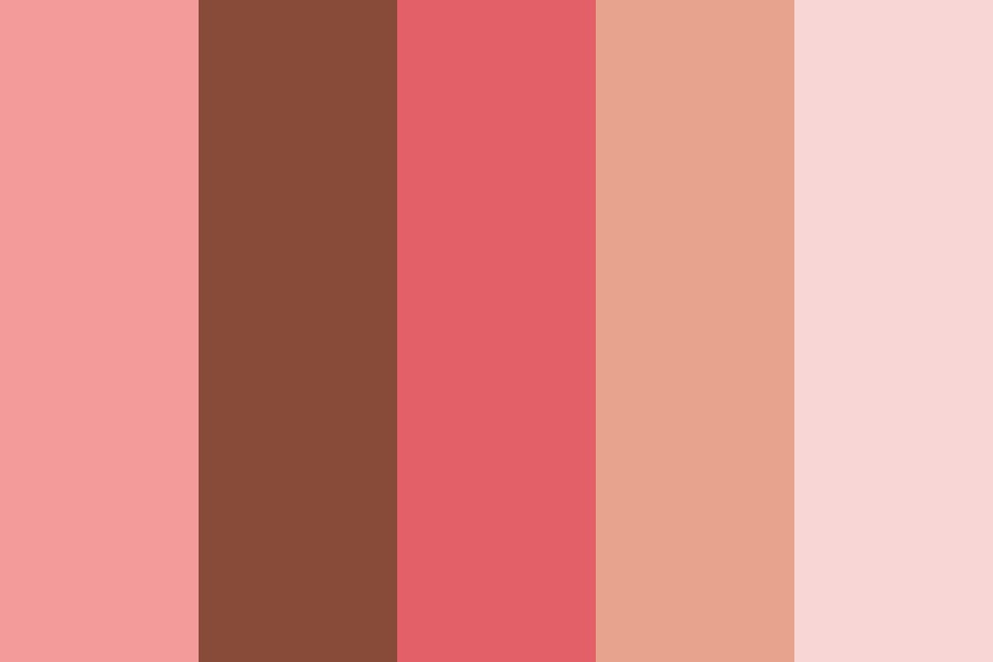 Pinky Chocolate Color Palette