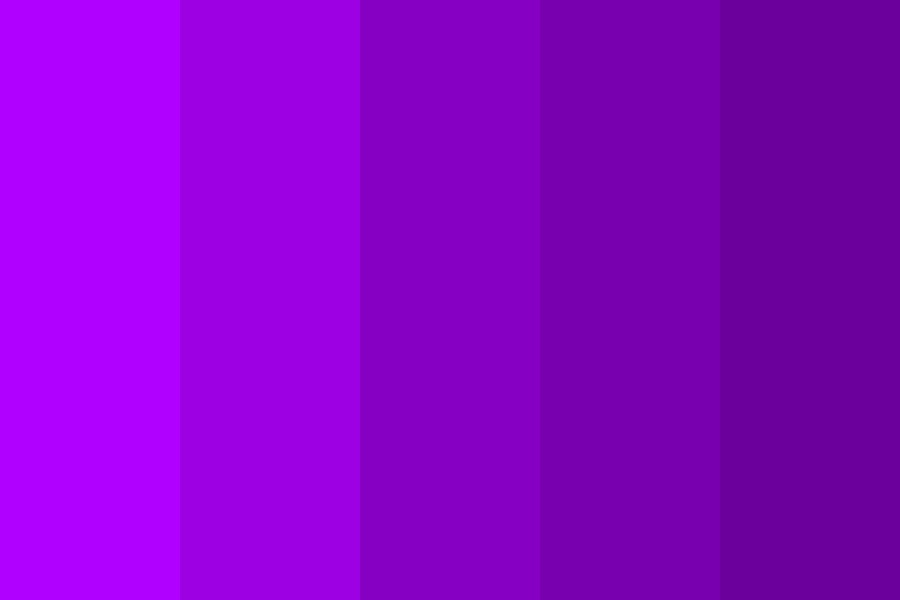 Purplesss Color Palette