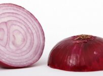 Red Onion Color Palette