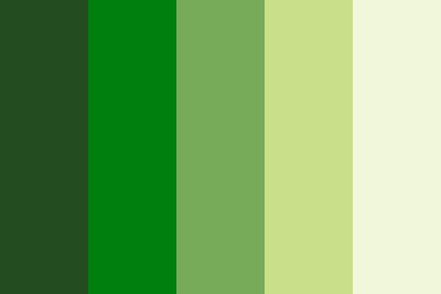 Reforest Color Palette