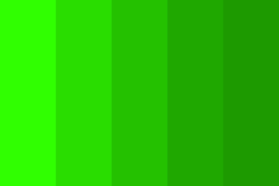 Shades Of A Green Shirt Color Palette