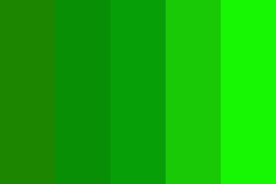 Shadow Of Green Color Palette