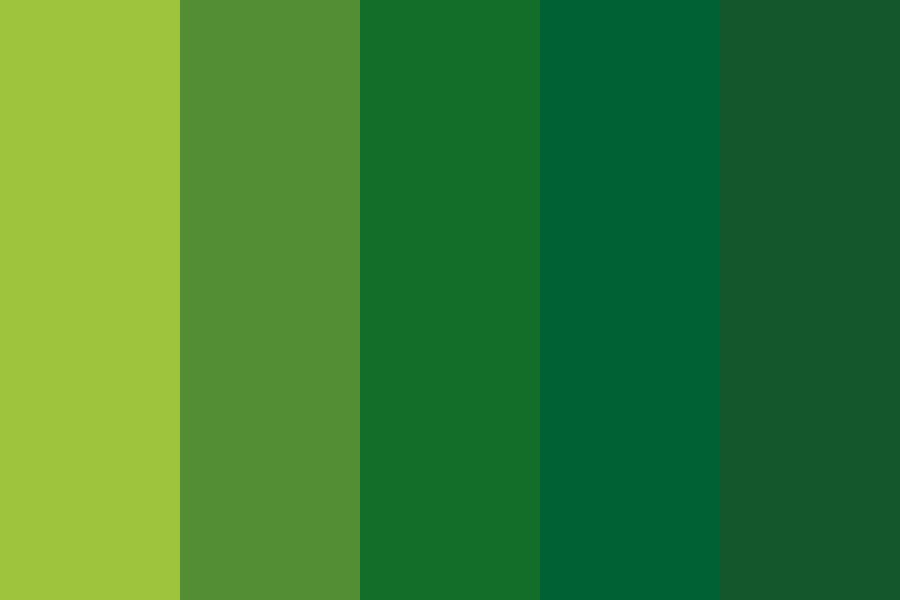 Spring Green And Emerald Color Palette