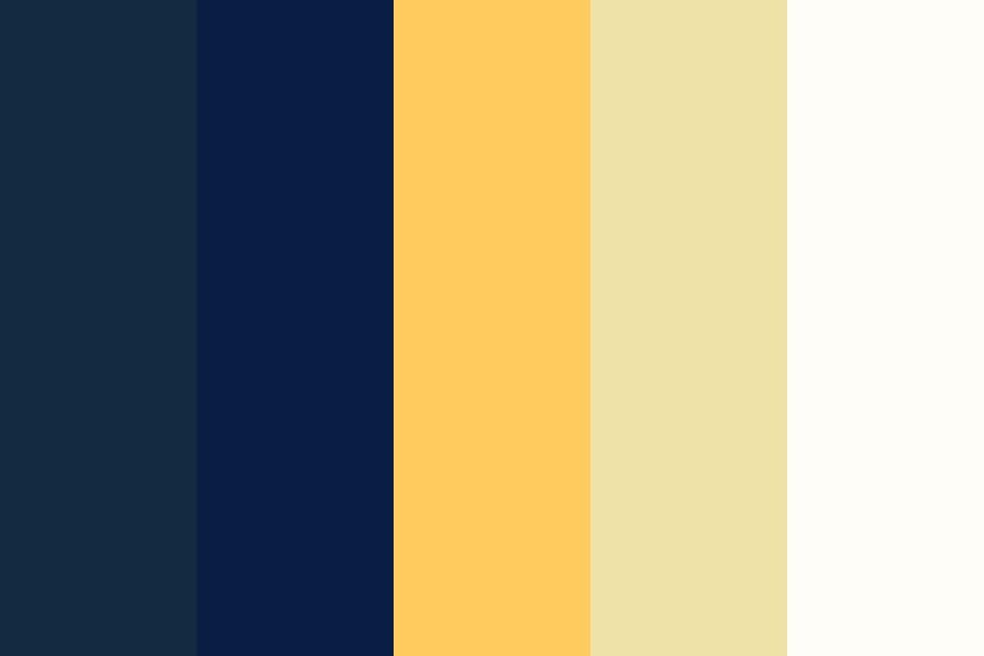 Starry Night Wedding Color Palette