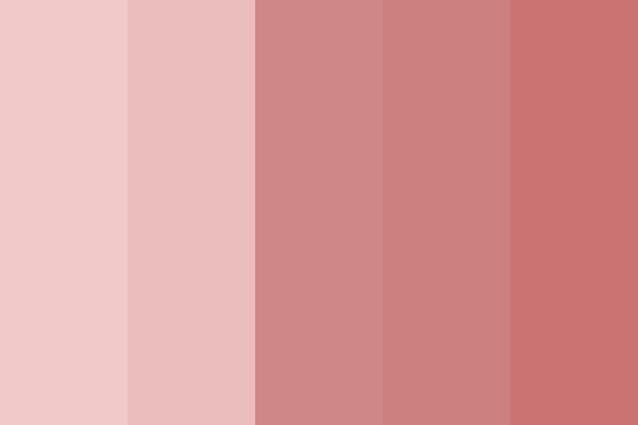Too Soft For This World Color Palette