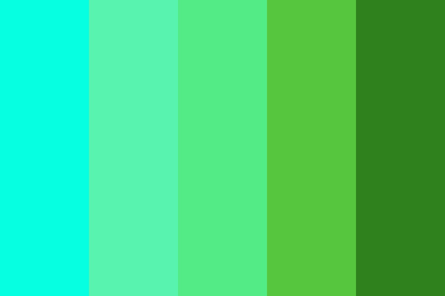 Turquoise To Deep Green Color Palette