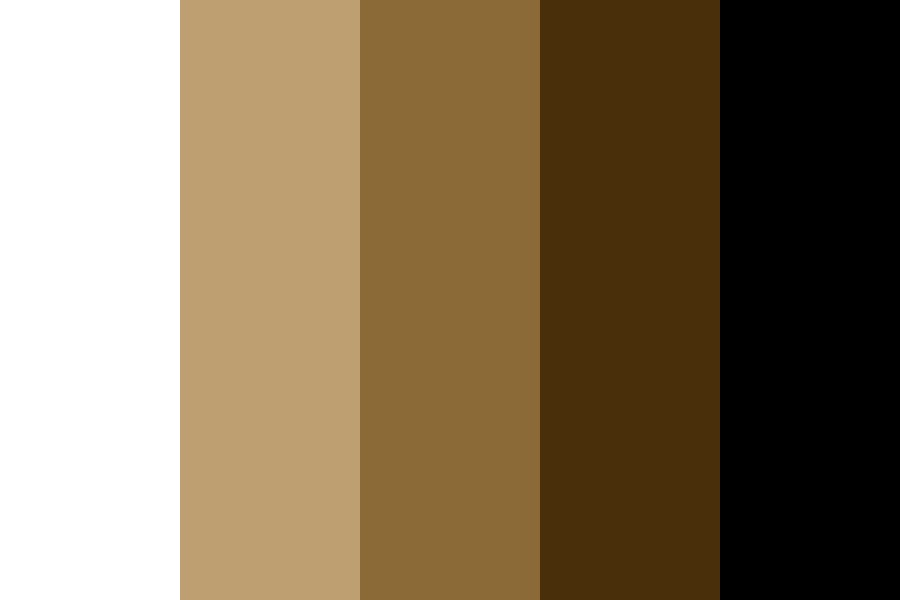 Winter Browns Color Palette