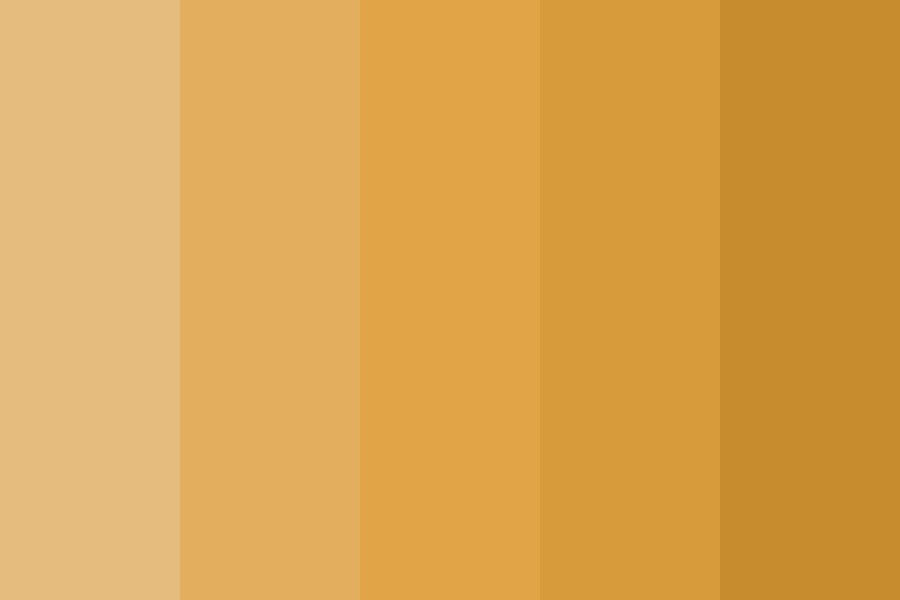 Ziva Oranges Color Palette